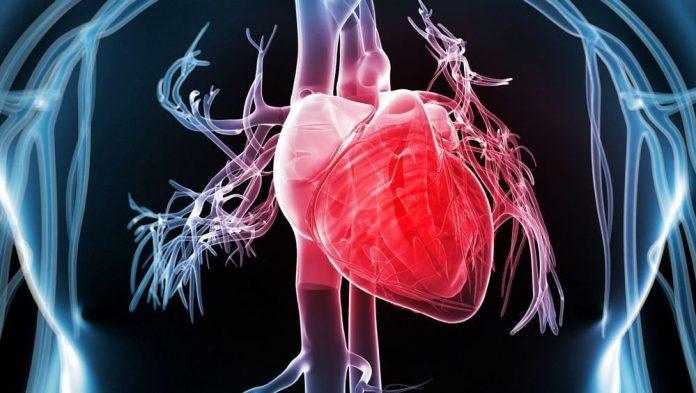 Як уберегти серце та жити довго й щасливо?