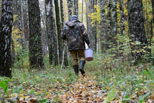 У лісі, неподалік Івано-Франківська, грибники натрапили на небезпечну знахідку