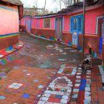 На Прикарпатті жінка перетворила своє обійстя у справжній музей
