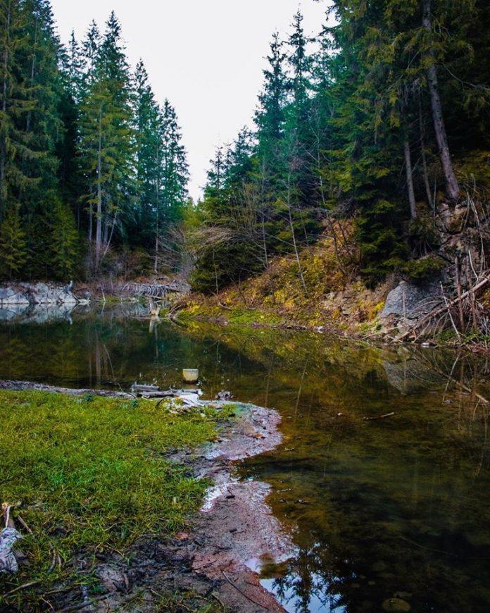 Карпати озеро