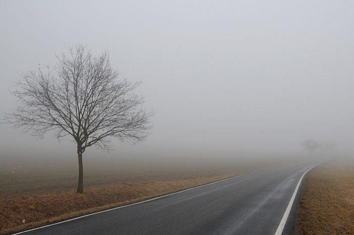 На Івано-Франківщині очікується туман та сильний вітер