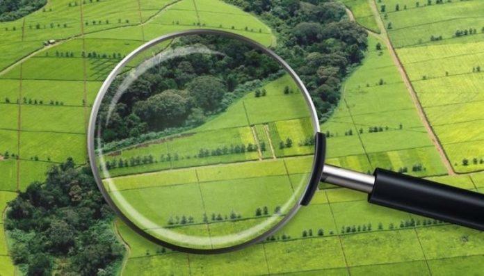 У Держгеокадастрі прикарпатцям-власникам землі нагадують про необхідність внесення відомостей