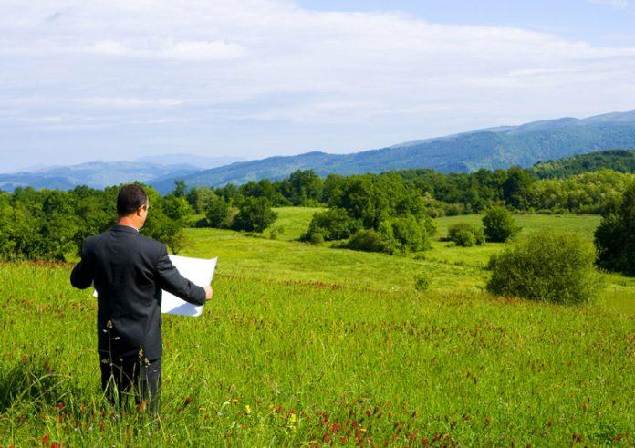 На Тисмениччині підприємець незаконно орендував ділянку площею 10 гектарів