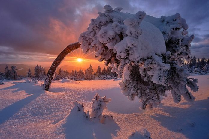 Якою буде погода на Прикарпатті у першу зимову п'ятницю