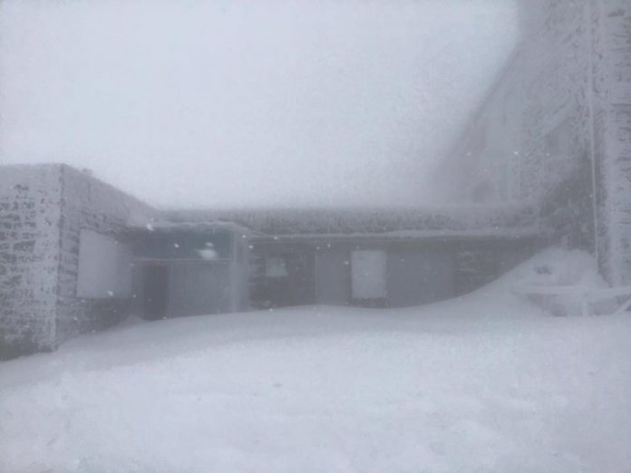 У Карпатах гору Піп Іван засипає снігом