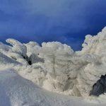 У мережі з'явились неймовірно красиві світлини засніжених Карпат