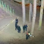 У міському парку Франківська п'яні підлітки підпалили зуб динозавтра
