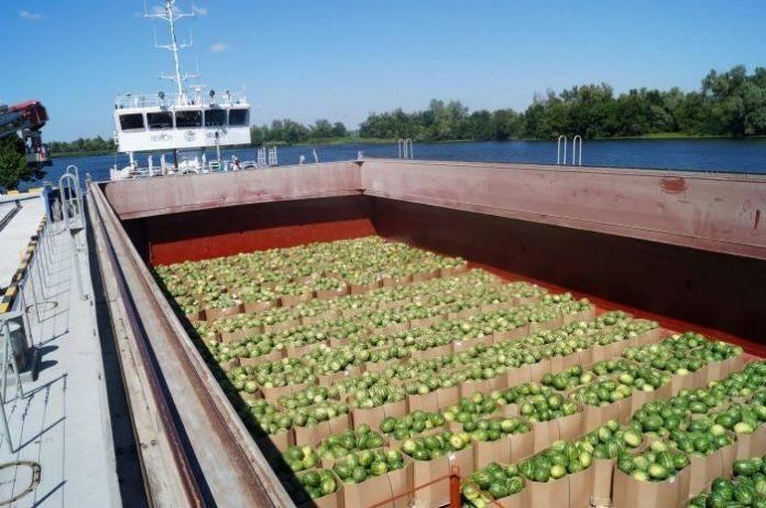 Франківець отримав від держави майже 300 тисяч гривень на «Морквяний флот» – тягати по річках овочі