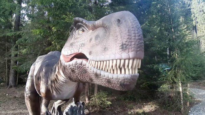 """Як велетенські динозаври оселилися на прикарпатському гірськолижному курорті """"Буковель"""""""