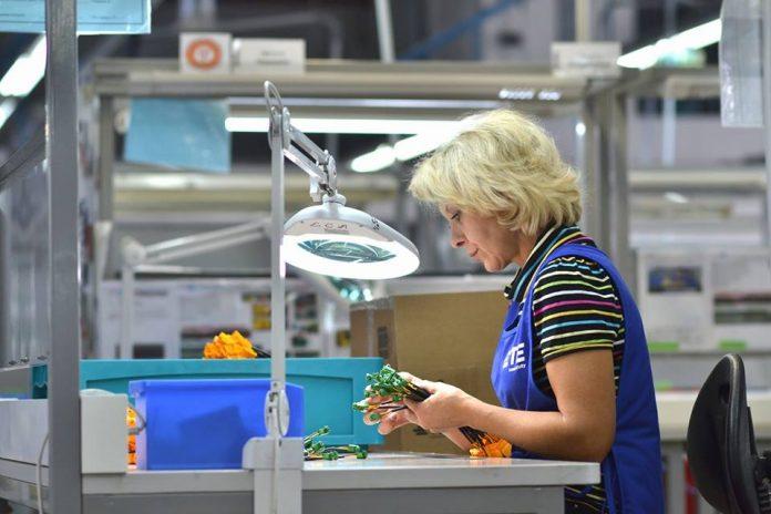 У Франківську на місці «Тайко Електронікс» розпочинає роботу нове підприємство