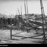 Унікальні знімки Верховини 100 років тому