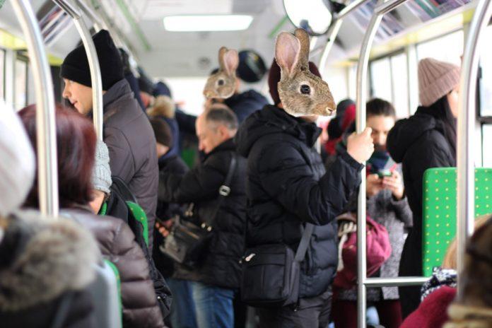 """У комунальному транспорті Франківська """"полюють на зайців"""""""