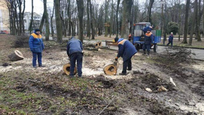 Вчорашня негода наробила шкоди у центральному парку Івано-Франківська