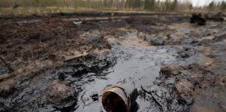 На Прикарпатті невідомі зловмисники викрали частину нафтопроводу - через це стався витік нафти у місцевий потічок