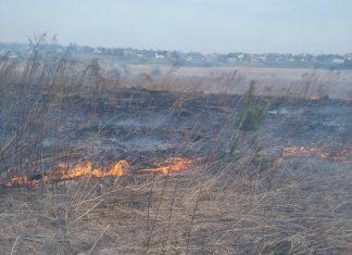 На Прикарпатті горіли суха трава, сміття та господарські будівлі