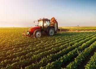 На 2020 рік для підтримки агропромислового комплексу на Прикарпатті передбачено більше 4 мільярдів гривень