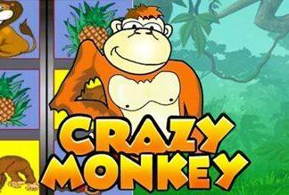 В чем секрет популярности слота Crazy Monkey?