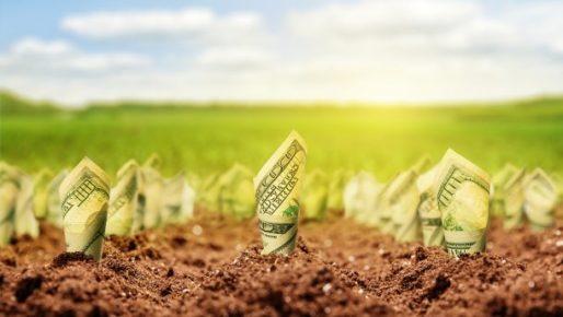 На Прикарпатті державі повернули земельні ділянки вартістю понад 11 мільйонів