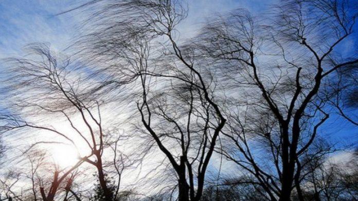 У вівторок на Прикарпатті знову очікуються сильні вітри: рівень небезпеки помаранчевий