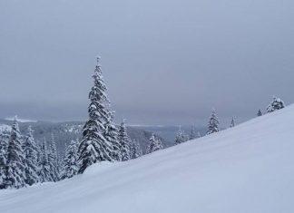 Карпати сильно засипало снігом: казкові фото і відео засніжених гір