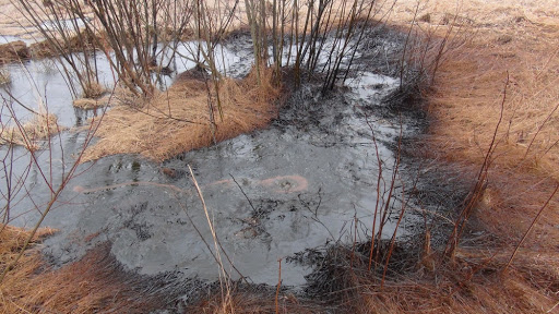 На Прикарпатті прорвало нафтову свердловину