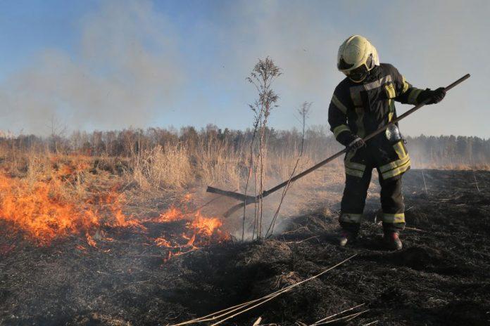З початку року на Прикарпатті виникло більше трьох сотень пожеж: відео