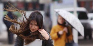 На Прикарпатті оголосили штормове попередження через сильний вітер
