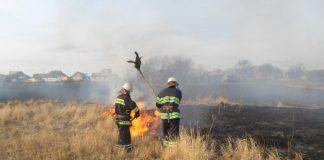 Сезон вогню: упродовж минулої доби на Прикарпатті зафіксовано більше 30 підпалів сухої трави