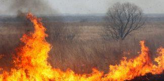 Упродовж минулої доби на Прикарпатті зафіксовано більше двадцяти підпалів сухої трави