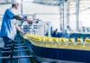 У Франківську зменшився обсяг виробництва харчових продуктів: відео