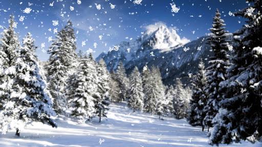 Бузьки прилетіли: на вихідних на Прикарпаття йде різке похолодання - очікується снігопади