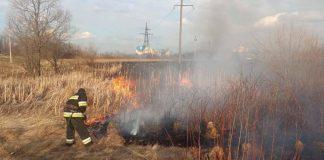 Більше трьох десятків підпалів за добу - попри всі заборони прикарпатці й надалі масово спалюють суху траву