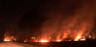 Неподалік Франківська масштабна пожежа - горять поля: фотофакт
