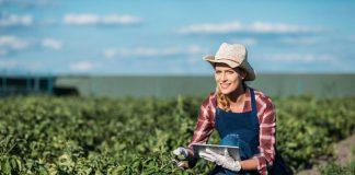 Прикарпатські фермери мають можливість скористатися держпрограмою підтримки