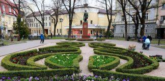 В АМКУ підозрюють змову під час проведення тендеру на озеленення Івано-Франківська