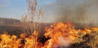 На Прикарпатті спалювання сухої трави на чагарників ледь не закінчилось фатально