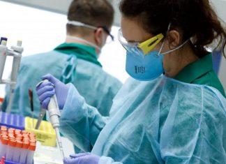 Івано-Франківська область може самостійно проводити ПЛР-діагностику на коронавірус