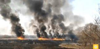 За три місяці 2020 року згоріло стільки ж трави і лісу, як за весь 2018 рік