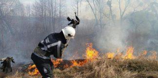 Упродовж минулої доби на Прикарпатті трапилося майже 20 умисних підпалів сухої трави