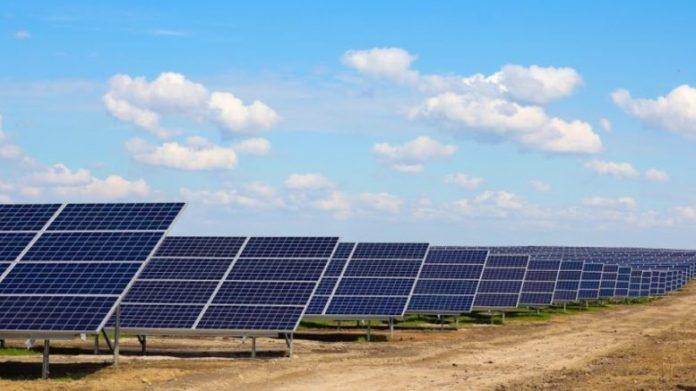 Потужну сонячну електростанцію збудують на Коломийщині