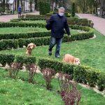 Франківців закликають не вигулювали чотирилапих улюбленців на центральній алеї міського парку: фото