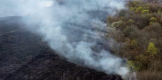 Прикарпаття у вогні: як виглядає вщент згоріла Думчина Долина з висоти пташиного польоту