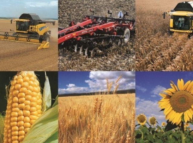 Прикарпатським сільгоспвиробникам з бюджету виділили понад 300 тисяч гривень