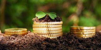 До місцевих бюджетів Прикарпаття надійшло майже 150 мільйонів плати за землю