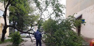 Івано-Франківськ потерпає від сильного буревію