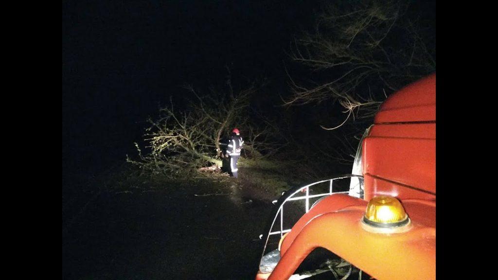 Нічна негода наробила шкоди на Прикарпатті - повалені дерева та пошкоджений газопровід