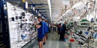 Які галузі виробництва розвиватимуть, щоб зріс економічний потенціал Прикарпаття