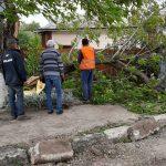 Сильний вітер наробив шкоди у Снятині: фото