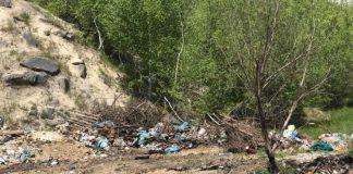 В селі на Рогатинщині люди борються зі стихійними смітниками, а влада скидає відходи в кар'єр