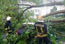 Вчорашня негода наробила шкоди в Івано-Франківську